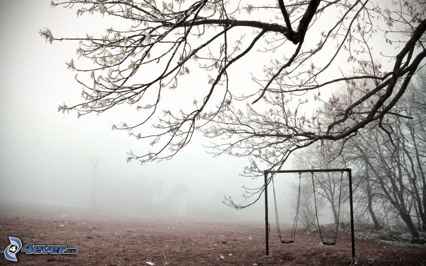 columpios, ramas, árboles, niebla