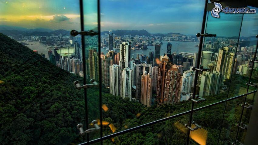 Hong Kong, rascacielos, bosque