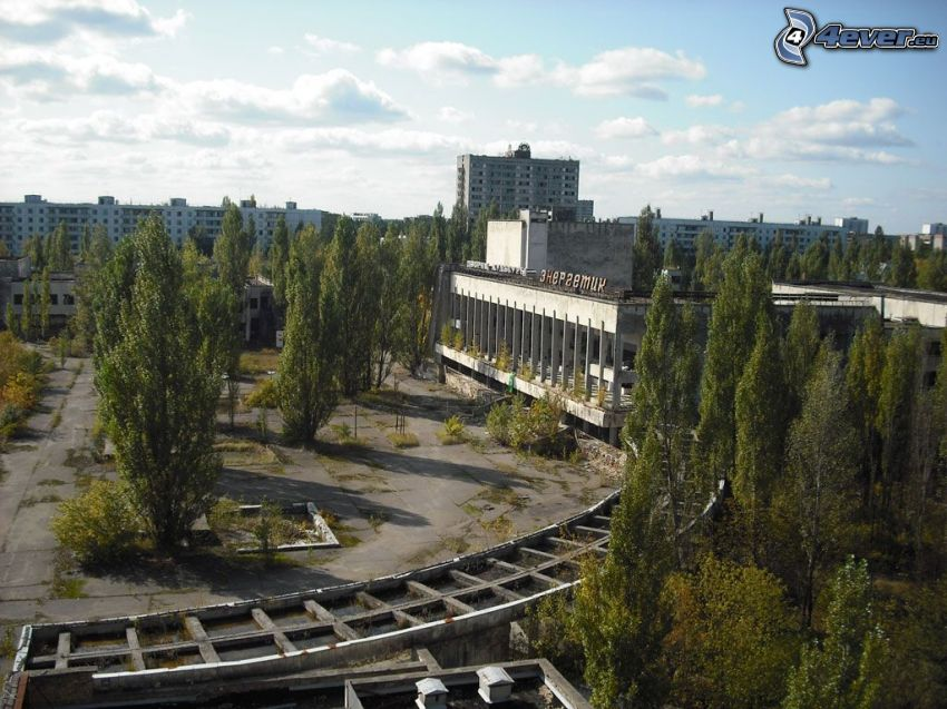 Prípiat, Chernobyl, bloque de pisos, árboles