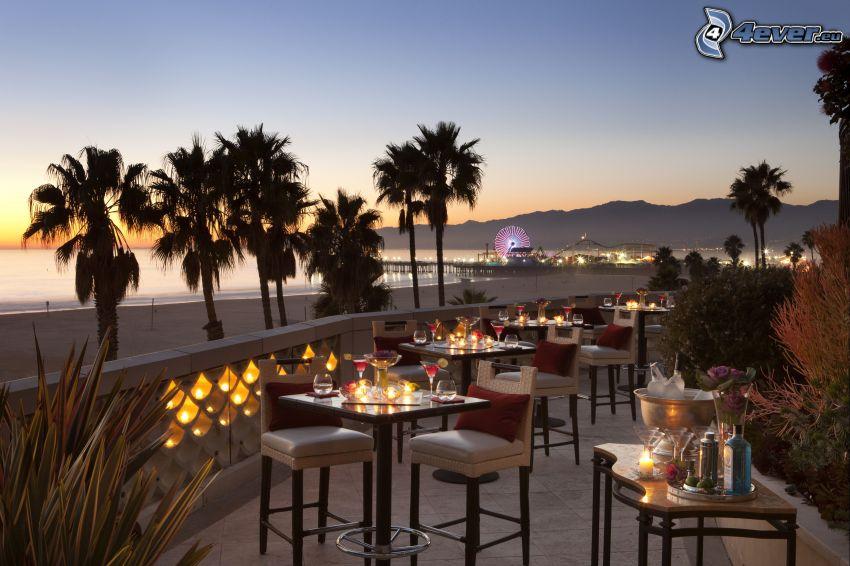 restaurante, terraza, rueda de la fortuna, palmera, Santa Monica