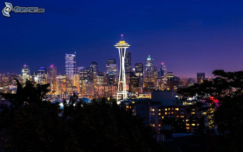 Seattle, Space Needle, ciudad de noche