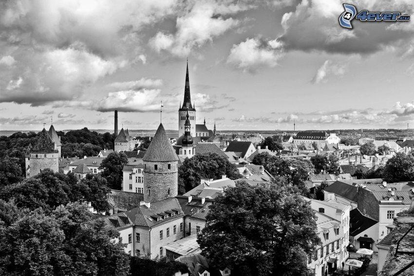 Tallinn, blanco y negro