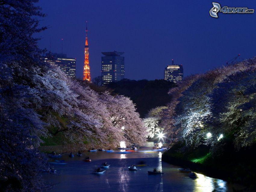 Tokio, río, kayak, árboles, ciudad de noche