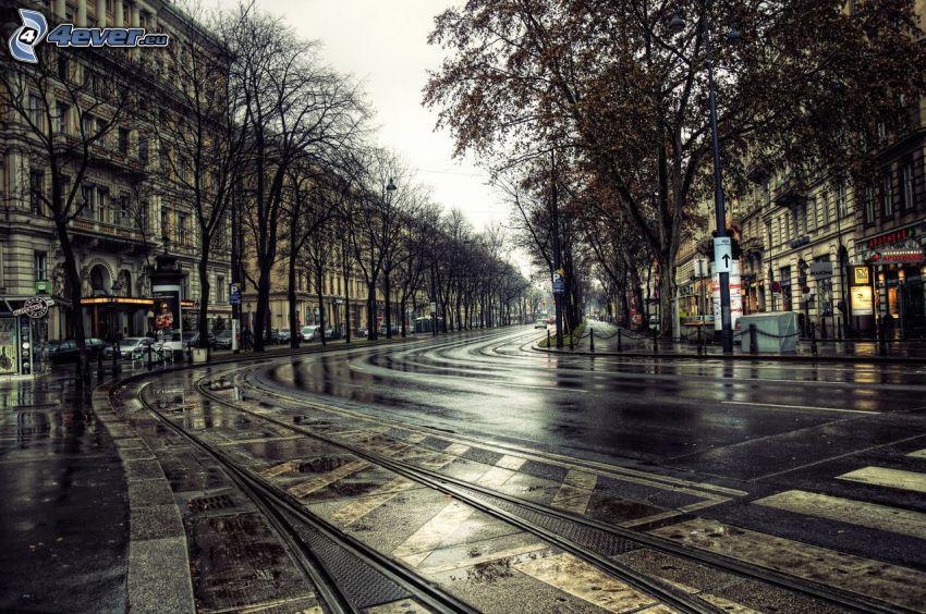 Viena, carril, calle, tranvía
