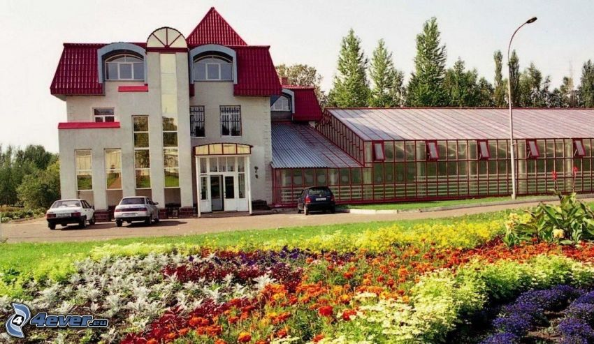 edificio, flores de colores