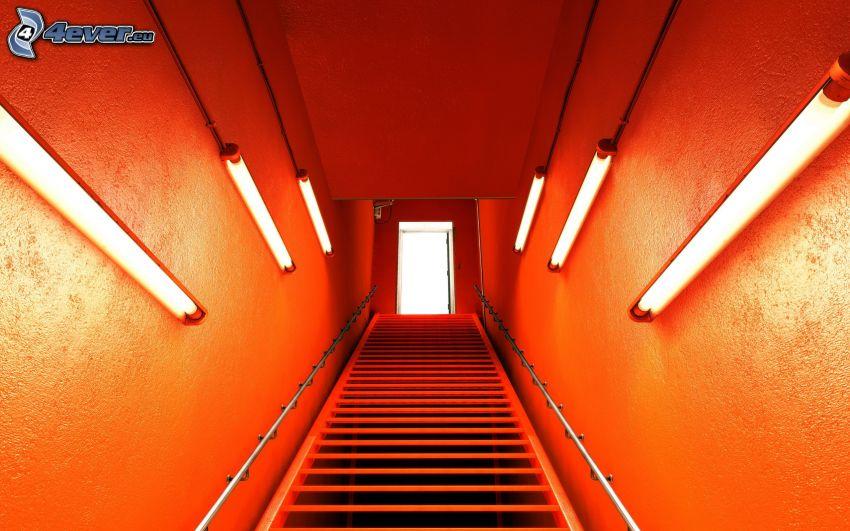 escalera, luces