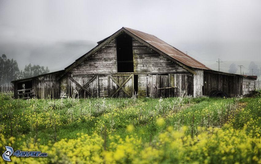 granja, cabaña, prado, HDR