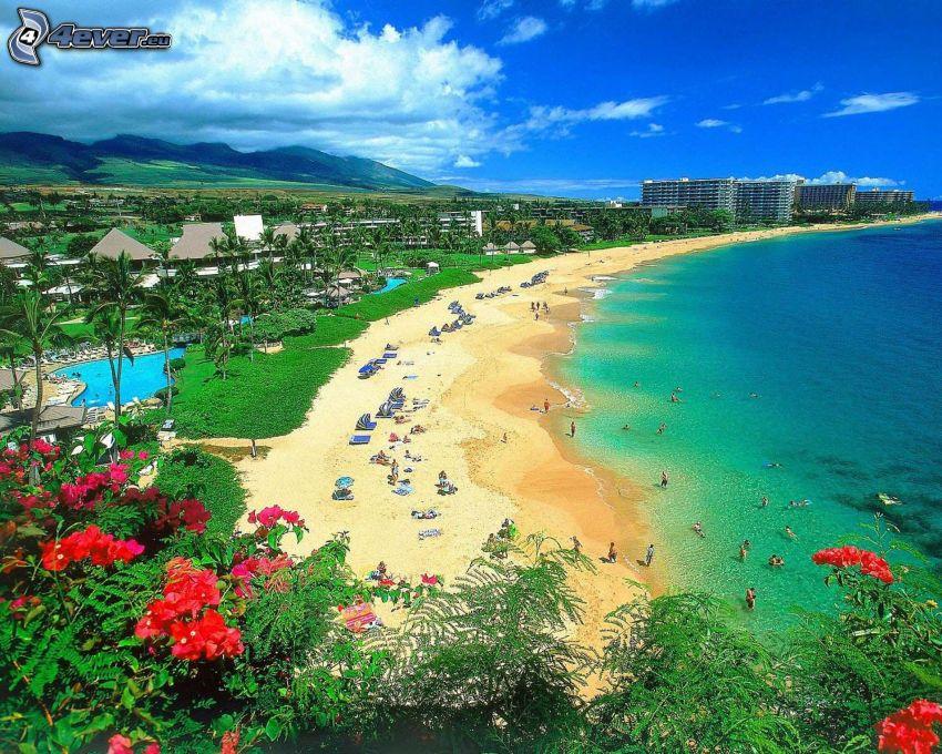 Hawai, playa, mar