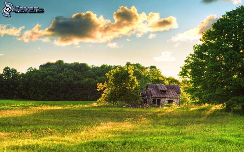 cabaña, casa abandonada, bosque, prado, puesta del sol