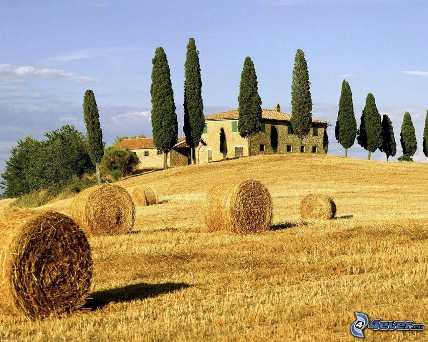 casa en la colina, casa de piedra, heno después de la cosecha