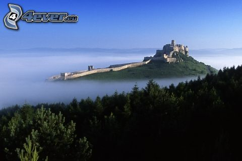 Castillo de Spiš, Eslovaquia, bosques de coníferas, niebla, inversión térmica