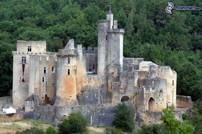 château de Bonaguil, bosque