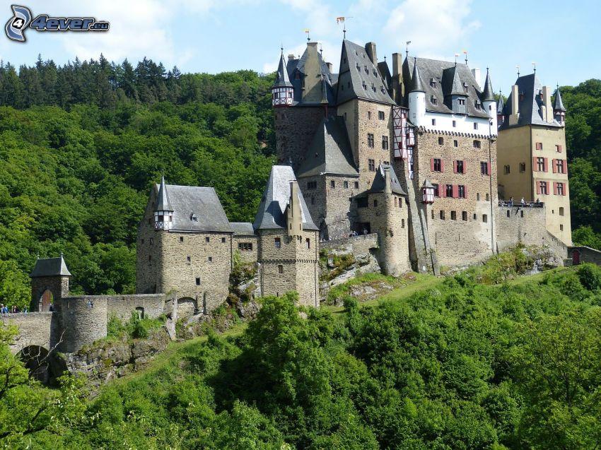 Eltz Castle, bosque verde