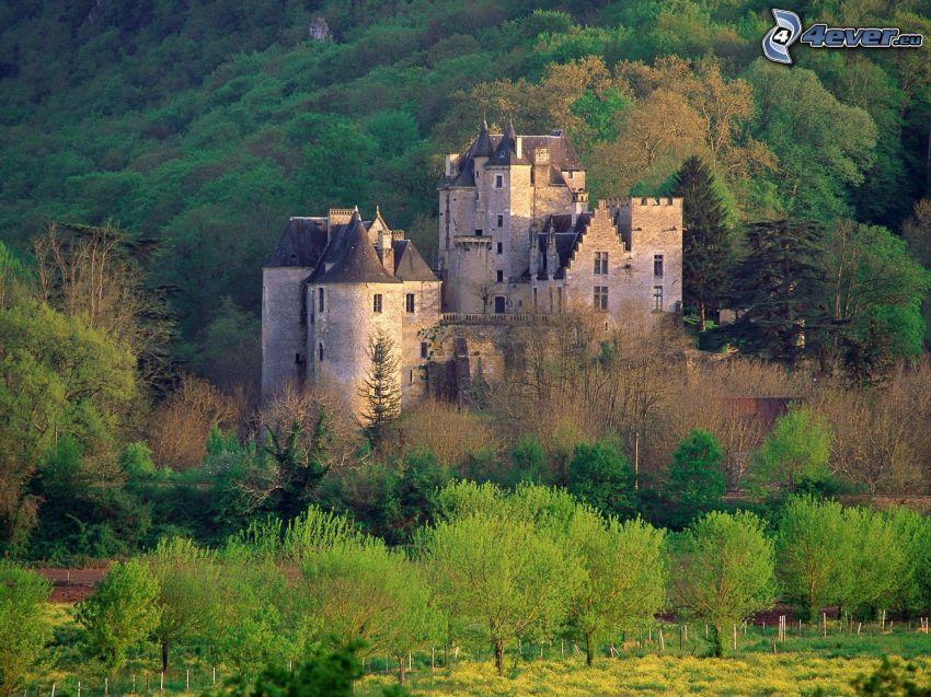 Fayrac, castillo, Francia, bosque