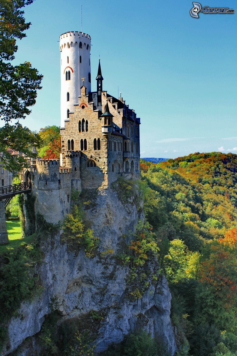 Lichtenstein Castle, bosque verde