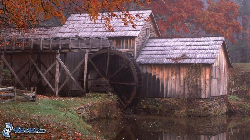 Mabry Mill, hojas de otoño, río