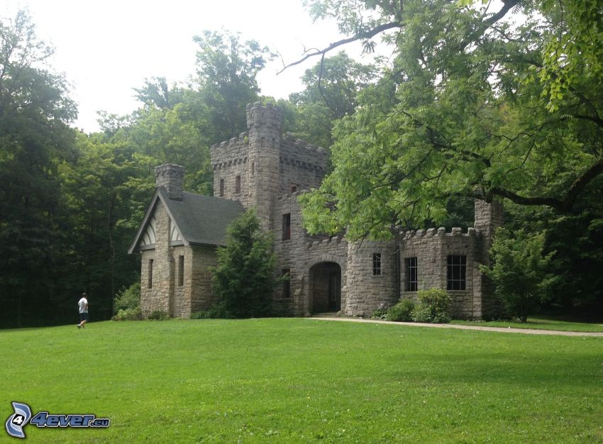 Squire's Castle, bosque, césped