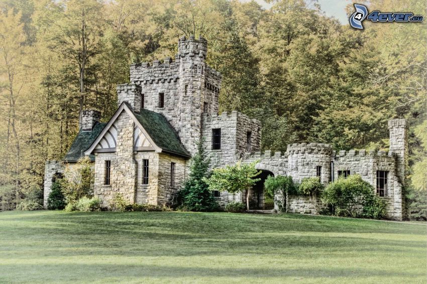 Squire's Castle, bosque