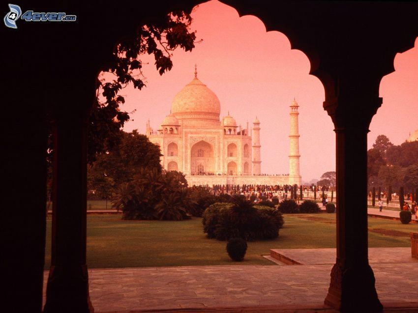 Taj Mahal, árboles, Arbustos, parque