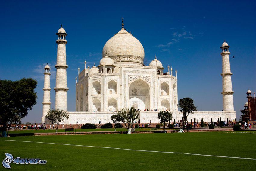 Taj Mahal, césped