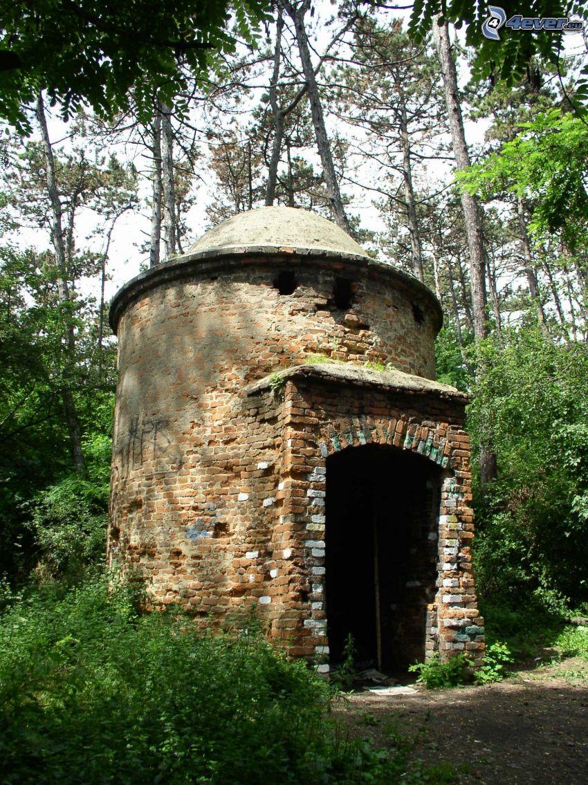 torre, bosque, Čermáň, Nitra
