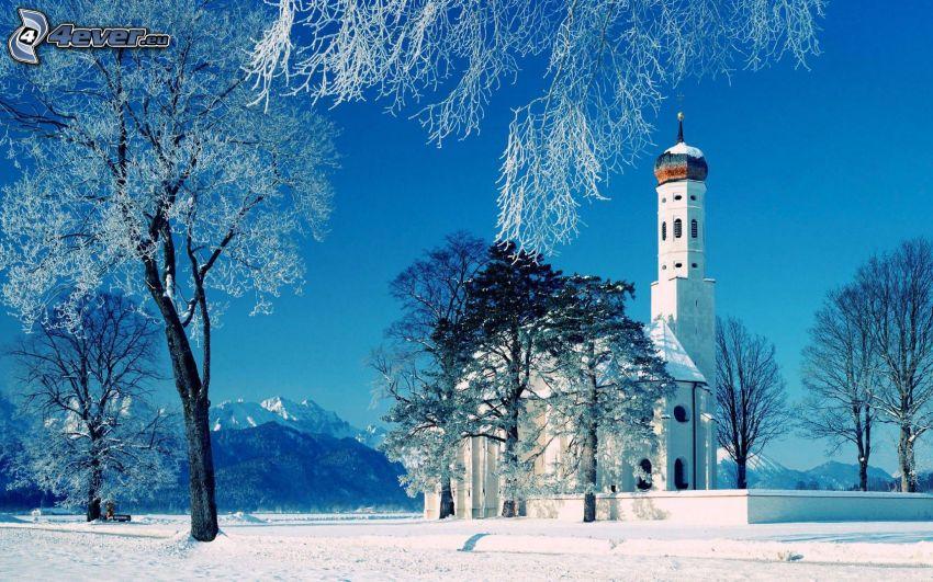 iglesia, árboles nevados