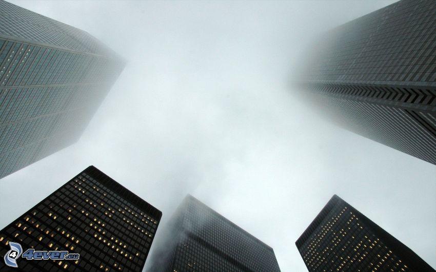 rascacielos, niebla