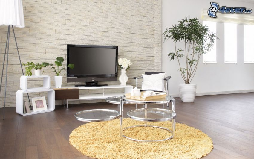 salón, TV, flores