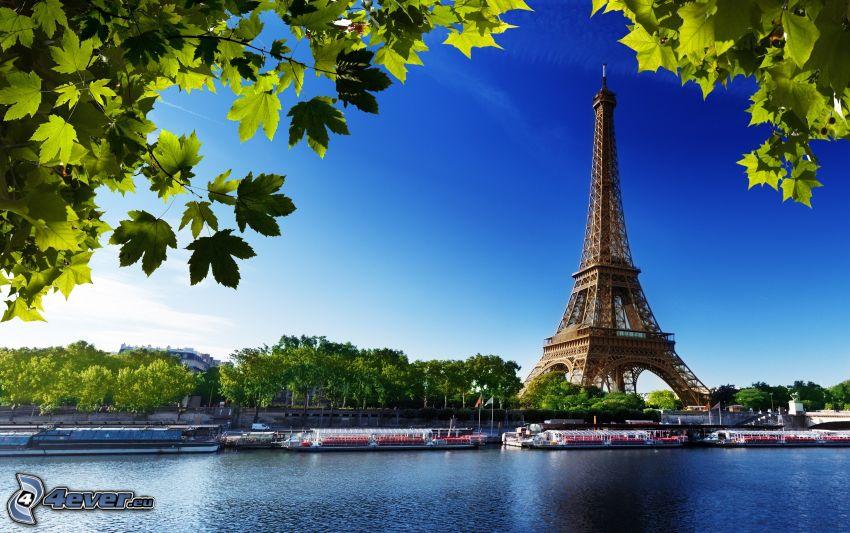 Torre Eiffel, río, hojas verdes