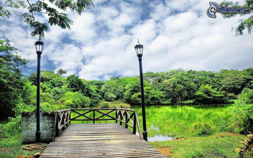 muelle de madera, lago, lámparas, bosque, nubes
