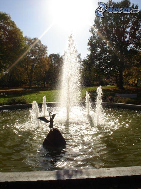 fuente, parque