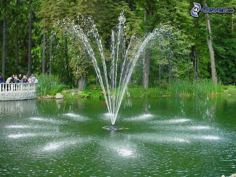 fuente, Rajecké Teplice, agua, parque