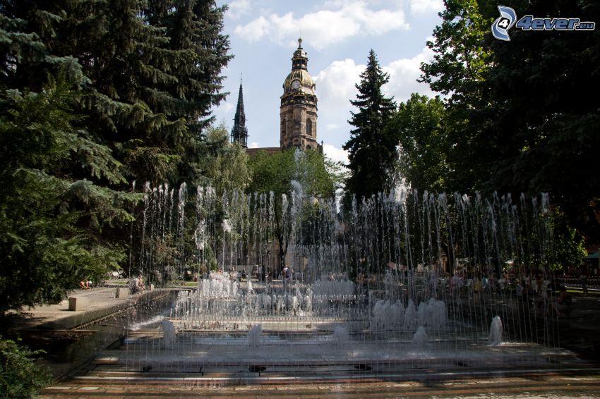 parque, fuente, Catedral de Košice, árboles coníferos