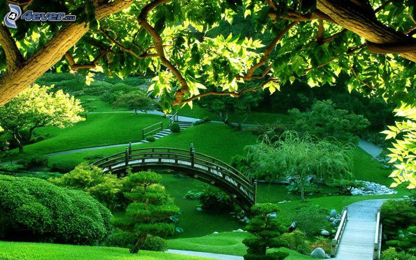 parque, puente, acera, verde