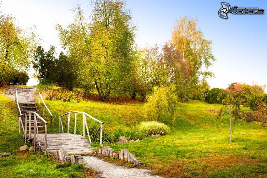 parque, puente de madera, árboles
