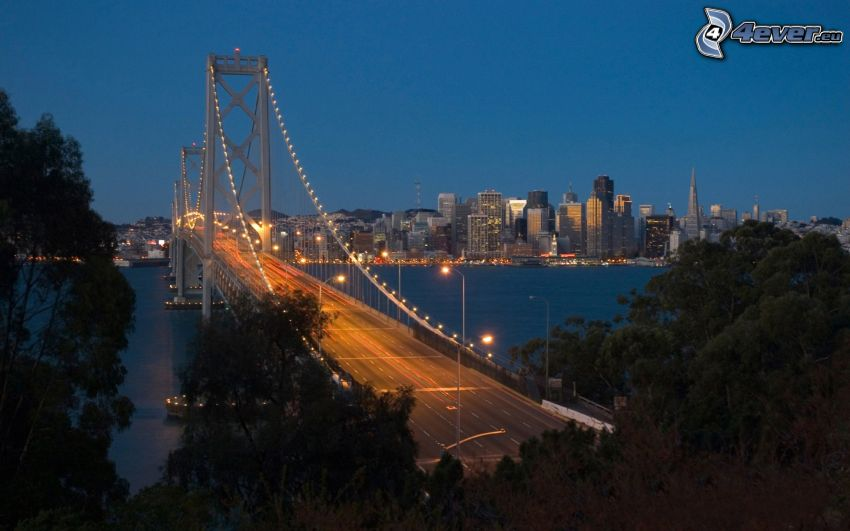 Bay Bridge, San Francisco, USA, atardecer, puente iluminado, árboles