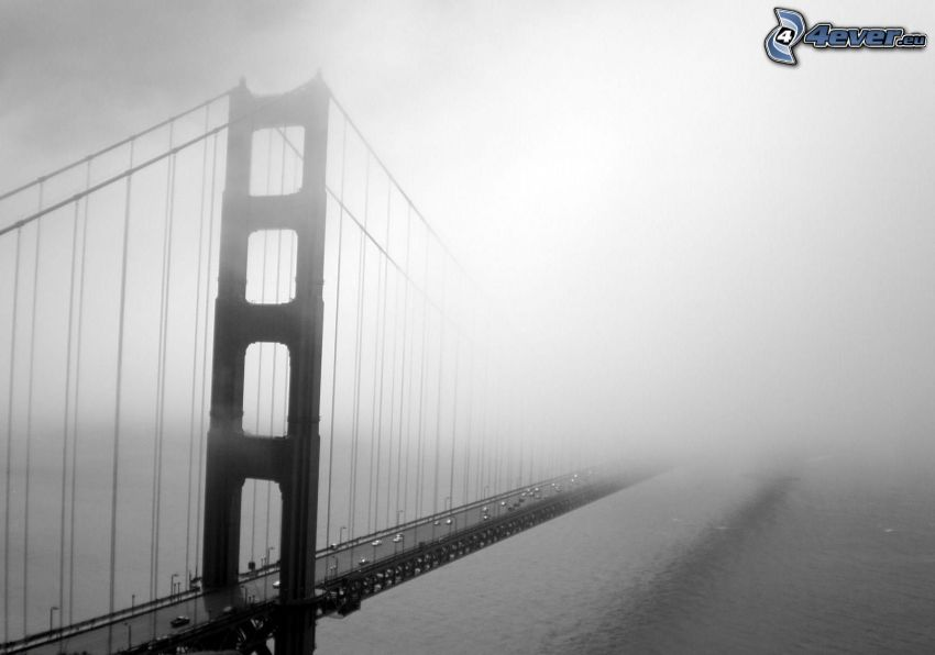 Golden Gate, niebla
