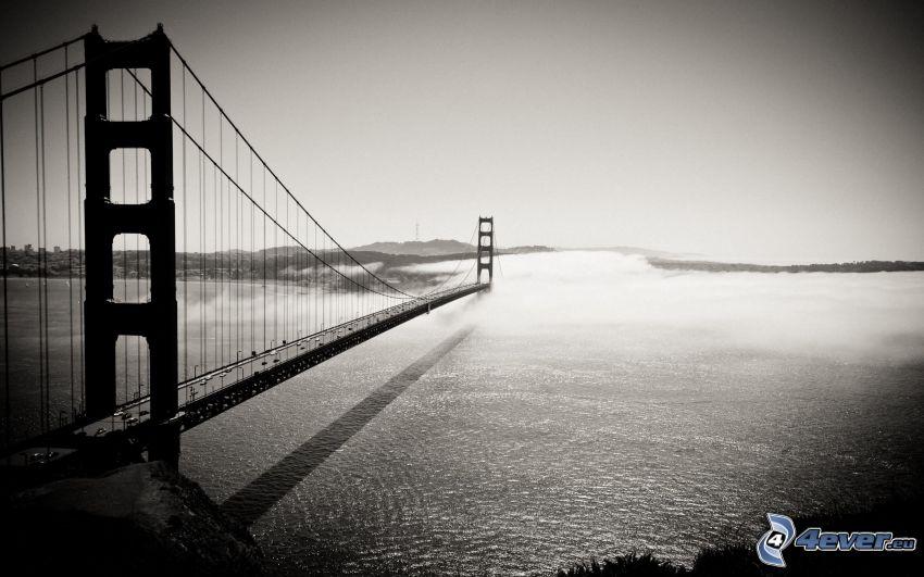 Golden Gate, niebla sobre el mar
