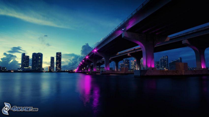 Miami Bridge, Autopista puente