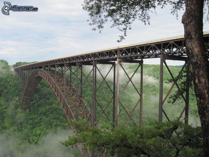 New River Gorge Bridge, niebla