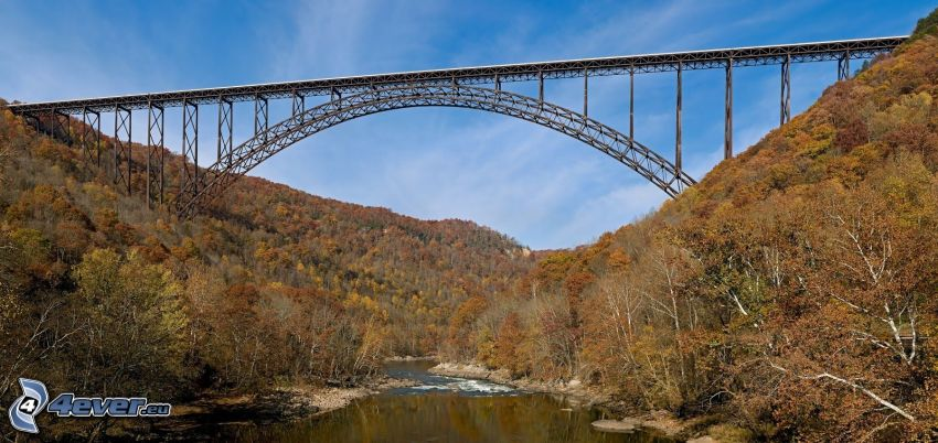 New River Gorge Bridge, río, bosque de otoño
