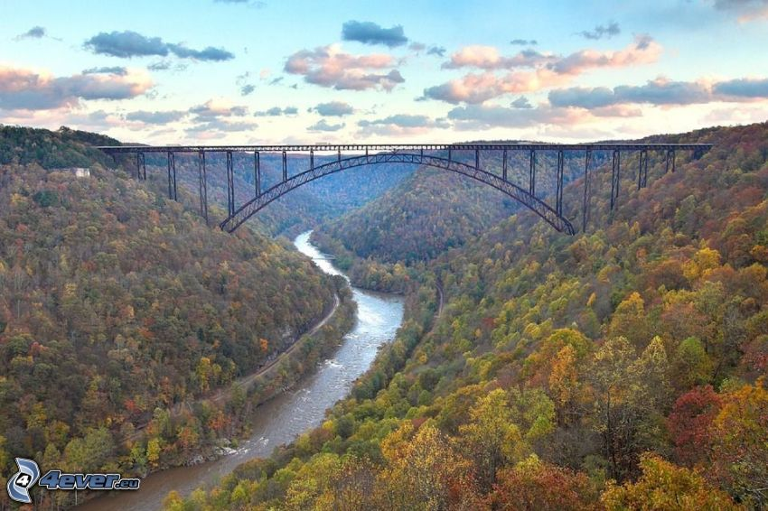 New River Gorge Bridge, río, bosque de otoño