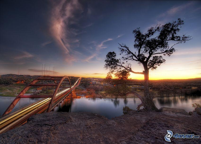 puente, árbol, río, cielo, HDR