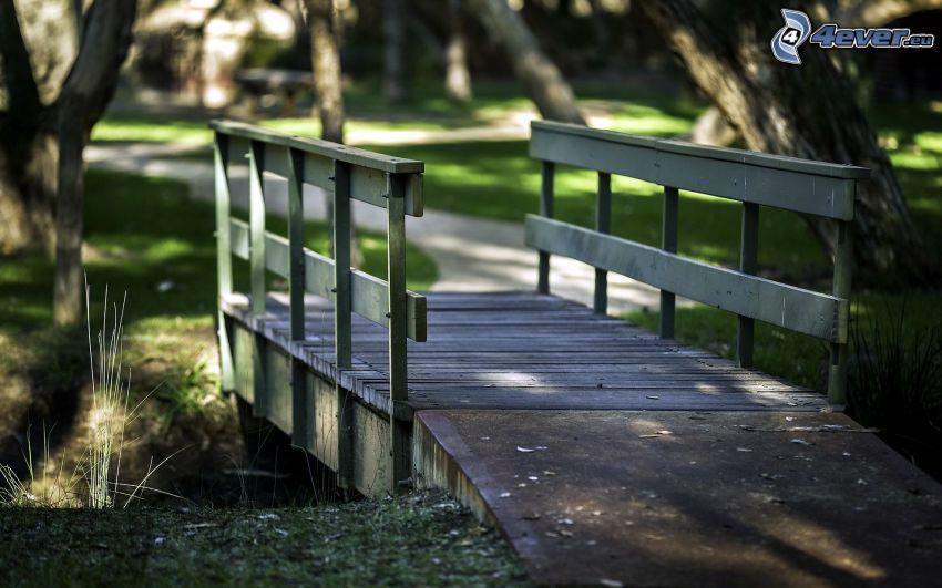 puente de madera, parque, acera
