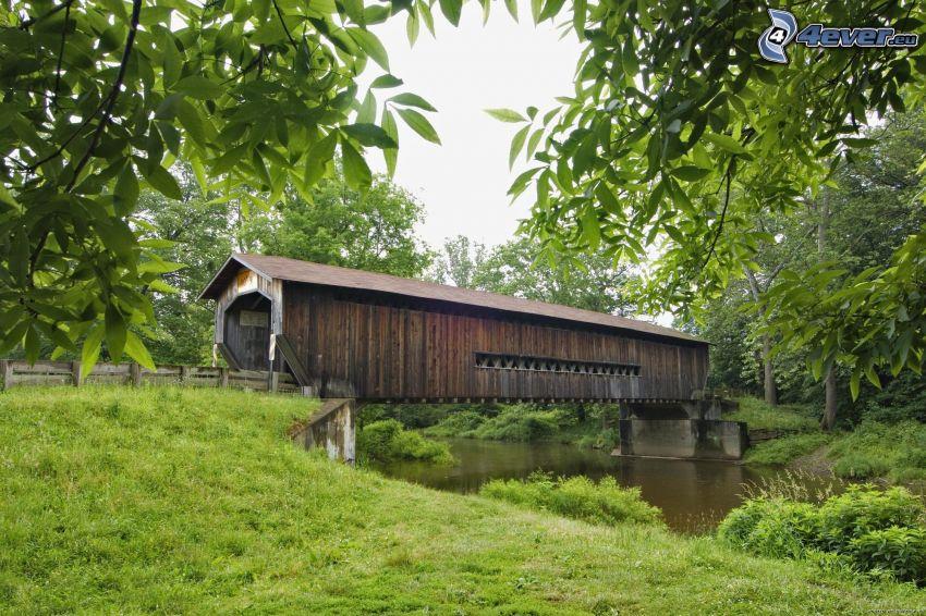 puente de madera, río, árboles