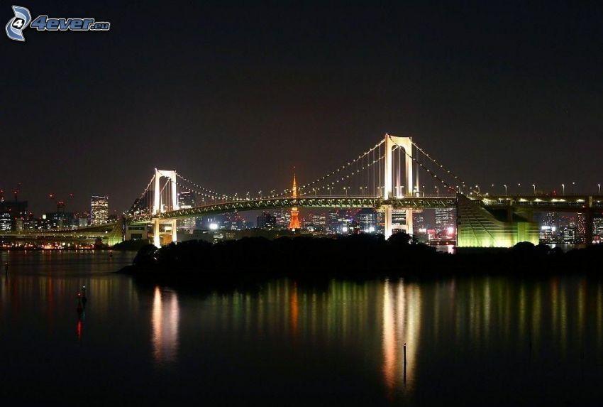 puente iluminado, río, noche