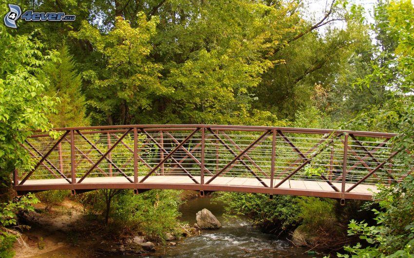 puente peatonal, árboles, río