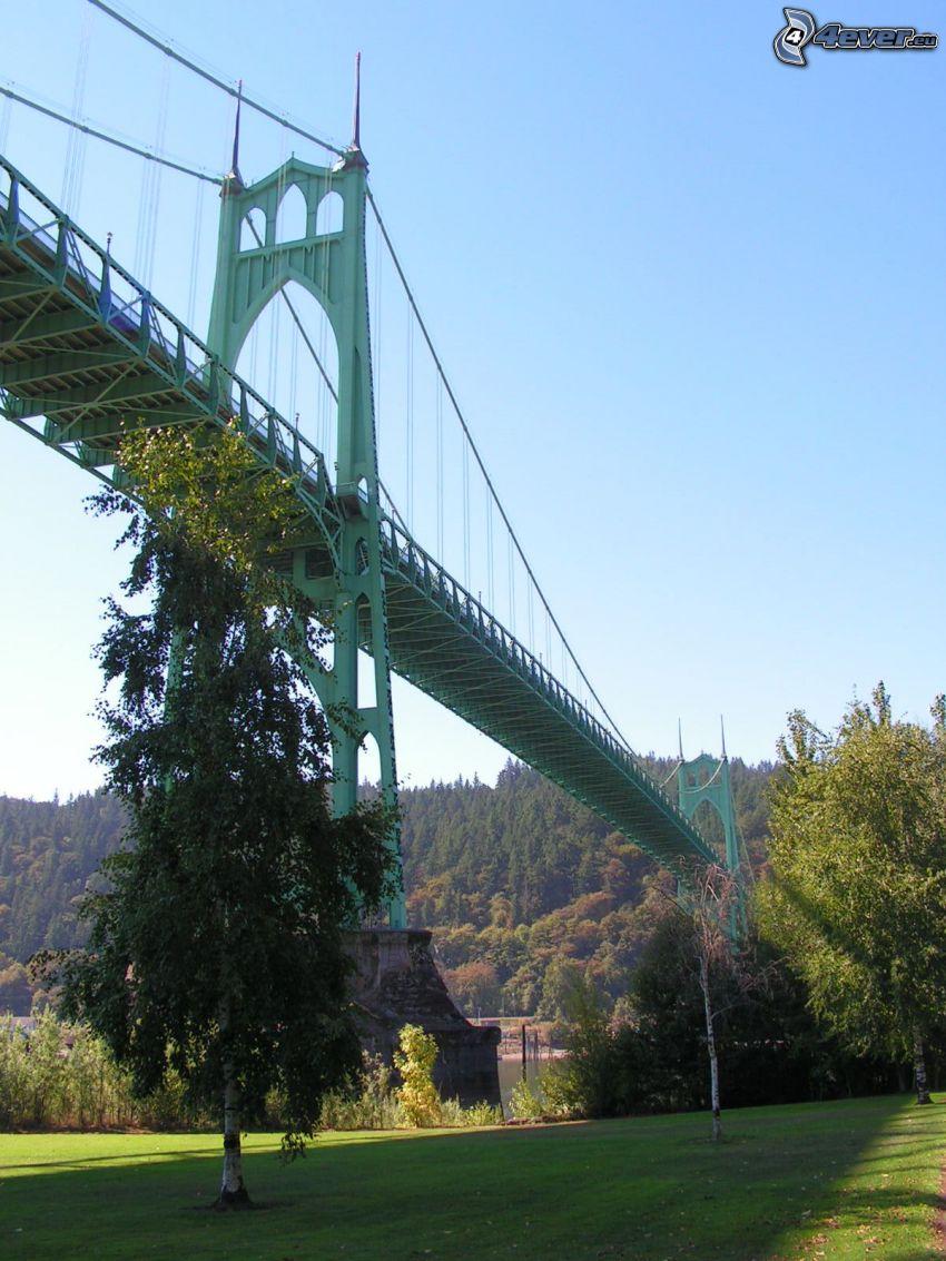 puente St. Johns, árboles