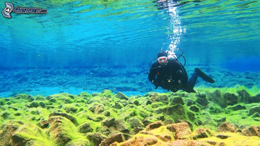 buceador, fondo del mar