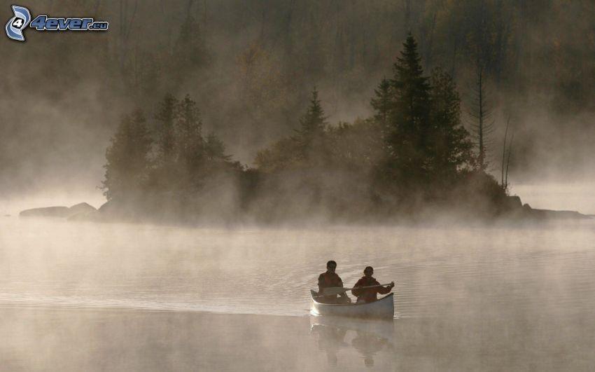 canoa, río, árboles